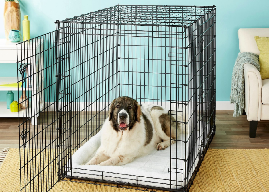 Are dog crates good for dogs?